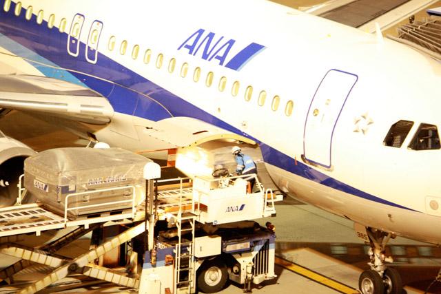 090203plane_nimotu.jpg