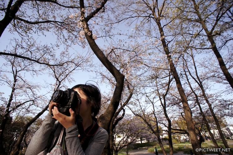 桜と5Dmark2