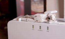 横たわる白熊