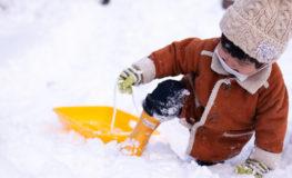 雪に埋もれる | SP35mm